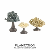"""Coral"" Assorted Sculptures Set"