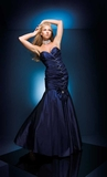 Paris Prom Dress 110510
