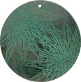 Blacklip shell round in green