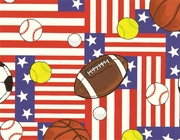 "All American Sports 24""x833'"