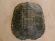 "Large Genuine Natural Turtle Shell 14""  (h)"