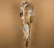 Authentic Navajo Indian Coyote Headdress  (h5)