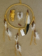 "Native American Navajo Dream Catcher 12"" -gold"
