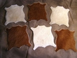 Real Southwest Cow Hide Coaster Set -6 Piece  (c8)