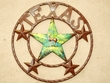 "Rustic Metal Texas Star 16"" -Deer  (33)  CLEARANCE"
