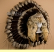 Native American Coyote Halo Headdress -Navajo (h4)