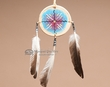 "Native American Navajo Indian Rawhide Shield 3""   (5)"