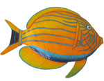Striped Surgeon Fish Wall Art