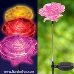 Solar Rose Flowers  (Set of 3)