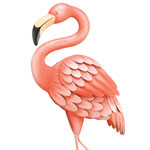Pink Flamingo Decor