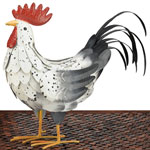White Rooster Decor MED