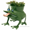 Fiona the Metal Frog Planter