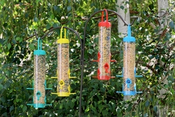 Multicolor Seed Bird Feeder (Set of 2) - Click to enlarge