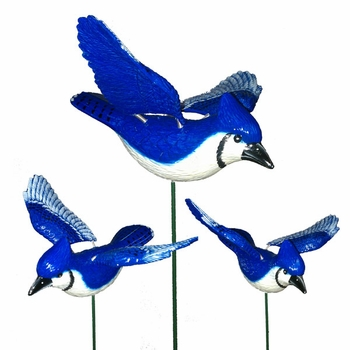 WindyWings Blue Jays Garden Stakes (Set of 6) - Click to enlarge
