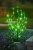 Anywhere Lighting LED Branches - Green