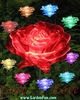 1 Dozen Solar Roses - (LED Color Changing)