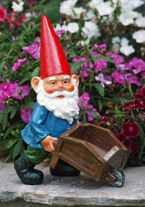 Garden Gnome with Wheelbarrow - Click to enlarge
