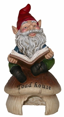Gnome Reading on Toad House - Click to enlarge