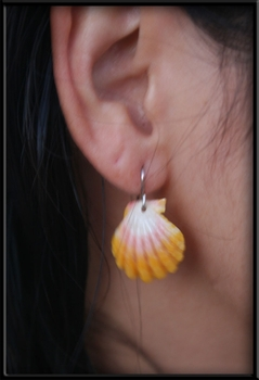 Simple Sunrise Shell Earrings