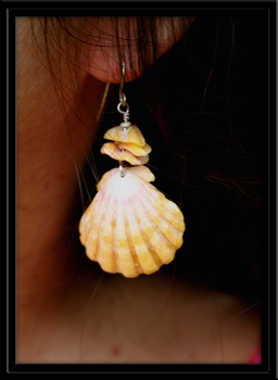 Common Yellow Sunrise Shell Earrings