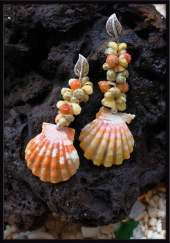 Sunrise Shell & Mongo Shell Earrings