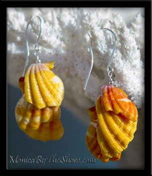 Kauai Sunrise Shells .999 Fine Silver Earrings
