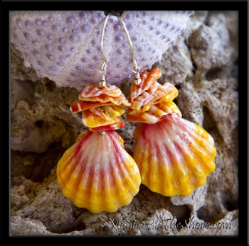 Local Style Hawaiian Sunrise Shell & Chips Earrings