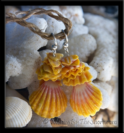 Hawaiian Sunrise Shell & Stacked Shell Chip Earrings