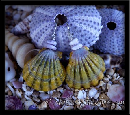 "Huge Green, Gold & Purple Sunrise Shell ""Moonrise"" & Purple Puka Shells Earrings"