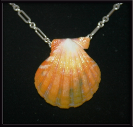 Yellow Green White Sunrise Shell Pendant