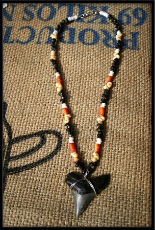 Great white shark tooth necklace aloadofball Gallery