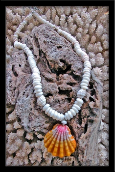 Hawaii Sunrise Shell & Puka Shells Seashell Lei Necklace