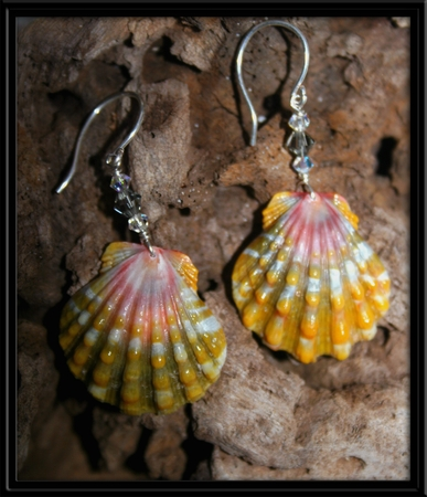 Crystal Rainbow Hawaiian Sunrise Shell Earrings