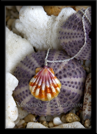 Tiger Stripe & Pink Hawaiian Sunrise Shell Silver Rope Chain necklace