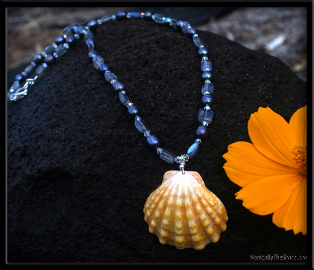 Black Pearl Gold Sunrise Shell & Crystal Necklace