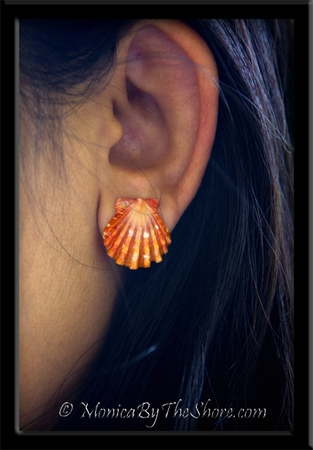 Bold Orange Hawaiian Sunrise Shell Post Sterling Silver Stud Earrings