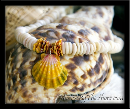 Kane Giant Hawaiian Sunrise Shell & Thick North Shore Puka Shell Necklace with Chips