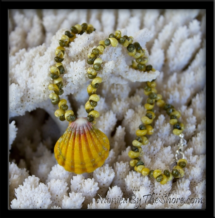 "Custom for ""Anja"" Hawaiian Sunrise Shell & Tahitian Mongo Shell Lei Necklace"