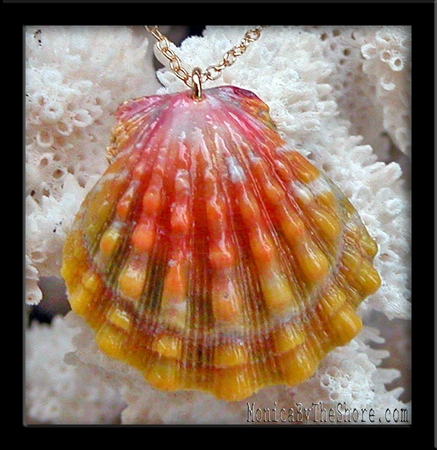 Peach Pink & Gold Hawaiian Sunrise Shell Pendant