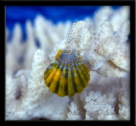 "Custom Rainbow Sunrise Shell Silver Necklace for ""Brittany"""