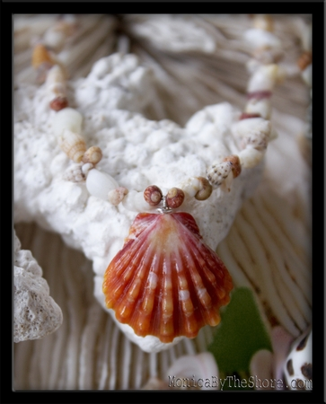 Red Hawaiian Sunrise Shell, Kauai Baby Seashells & Kahelelani Lei Necklace