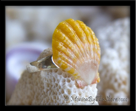 Yellow & White & Pinkish Hawaiian Sunrise Shell Toe Ring