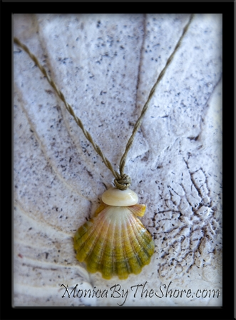 "Green & Pink ""Country"" Style Sunrise Shell Twisted Cord Necklace"