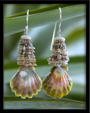 Opihi Shells & Pink Green Hawaiian Sunrise Shell Earrings
