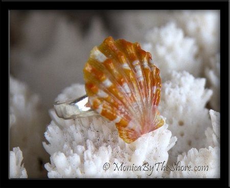 Orange Speckles Hawaiian Sunrise Shell Toe Ring