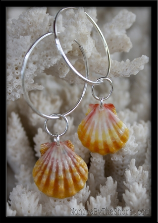 Colorful Hawaiian Sunrise Shells & Silver Rings & Hoop Earrings
