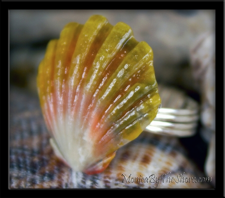 Custom Hawaiian Sunrise Shell Ring for Kailey