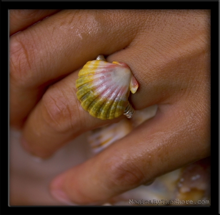 Green Rainbow Hawaiian Sunrise Shell & Silver Ring