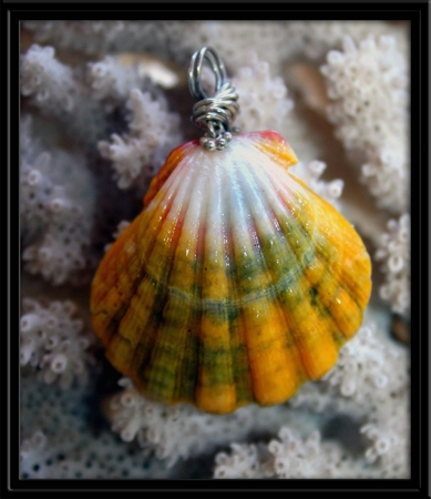 Hawaiian Sunrise Shell Pendant Green White Pink Aloha