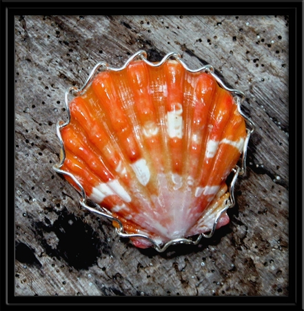Orange Sunrise Shell Ring